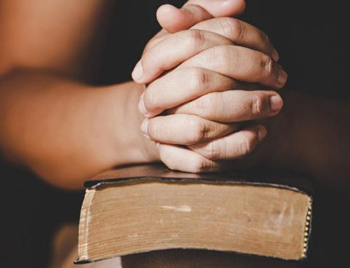 Invitation – Information Messe des Familles – À la joie je t'invite